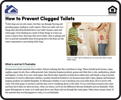 Prevent Clogged Toilets